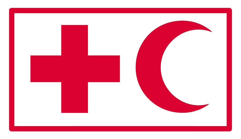 Learn more about the IFRC Youth Engagement Strategy (Y.E.S ...